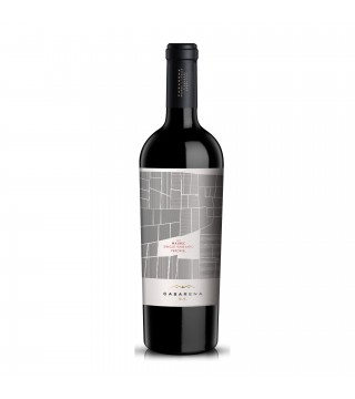 Casarena Jamilla Single Vineyard Malbec 2012